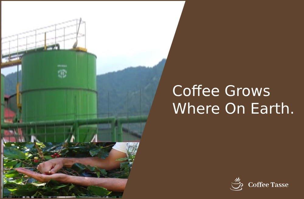 Coffee Grows Where On Earth