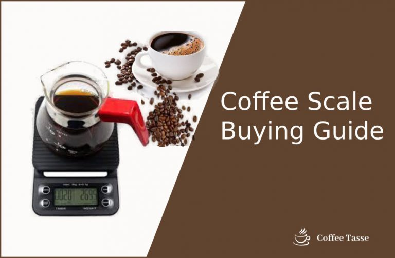 Coffee Scale Buying Guide